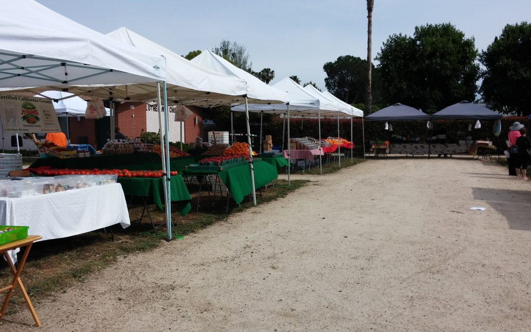 Access Local: South Sac Farmers Market Offers Fresh, Local, and Affordable Produce